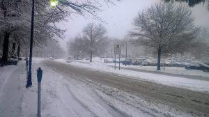 Snow on a street in Greak Neck, NY (C) Heather Bosch Media